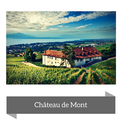 Château de Mont